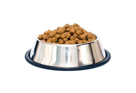 Vince Stanzioen Dog Food Investors
