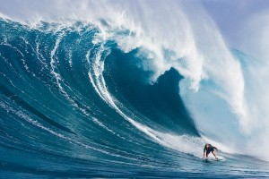 Vince Stanzioen financial trading trading the waves